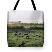 Friesian Bullocks, Ireland Herd Of Tote Bag by The Irish Image Collection