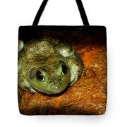 Frog Love Tote Bag by LeeAnn McLaneGoetz McLaneGoetzStudioLLCcom