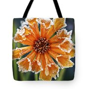 Frosty flower Tote Bag by Elena Elisseeva