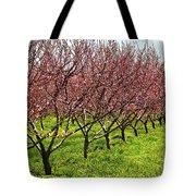 Fruit Orchard Tote Bag by Elena Elisseeva