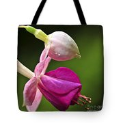 Fuchsia flower Tote Bag by Elena Elisseeva