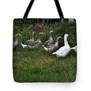 Gaggle Of Geese Tote Bag by Kaye Menner
