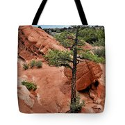 Garden Of The Gods  - The Name Says It All Tote Bag by Christine Till