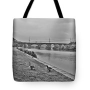 Geese Along The Schuylkill River Tote Bag by Bill Cannon