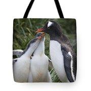 Gentoo Penguin Parent And Two Chicks Tote Bag by Suzi Eszterhas
