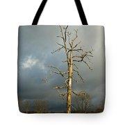 Ghost Tree Tote Bag by Douglas Barnett