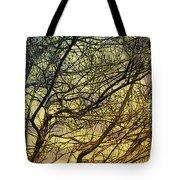 Ghosts Of Crape Myrtles Tote Bag by Judi Bagwell