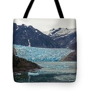 Glacial Bay and Ice Tote Bag by Mike Reid