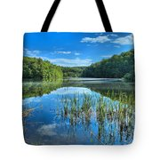 Glassy Waters Tote Bag by Adam Jewell