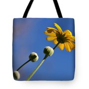 Golden Daisy On Blue Tote Bag by Kaye Menner