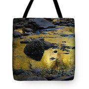 Golden Fall Reflection Tote Bag by Heather Kirk
