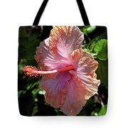 Golden Peach Hibiscus Tote Bag by Kevin Smith