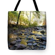 Golden Reflection In The Canyon Of  Light Tote Bag by Heather Kirk