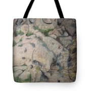 Grand Dad's Roots Tote Bag by Diane montana Jansson