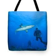 Gray Reef Shark With Divers, Papua New Tote Bag by Steve Jones