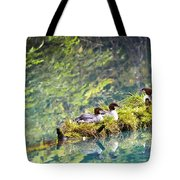 Grebe Podicipedidae Birds Sitting On A Tote Bag by Richard Wear