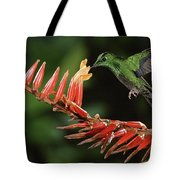 Green-crowned Brilliant Heliodoxa Tote Bag by Michael & Patricia Fogden
