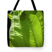Green on Green Tote Bag by Albert Seger