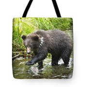 Grizzly Cub Catching Fish In Fish Creek Tote Bag by Richard Wear