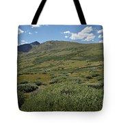 Guanella Pass Horizon Tote Bag by Michael Kirsh