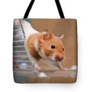 Hamster Tote Bag by Tom Gowanlock