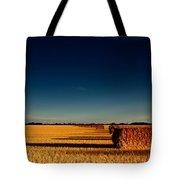 Hay Bales Tote Bag by Cale Best
