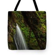 Hidden Falls Tote Bag by Mike Reid