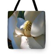 Hidden Magnolia Tote Bag by Carol Groenen