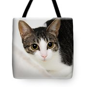 Hiding In The Bath Tub Tote Bag by Andee Design