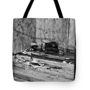 Homeless Tote Bag by Paul Ward