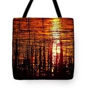 Horicon Marsh Sunset Wisconsin Tote Bag by Steve Gadomski