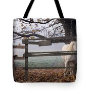 Horse At Fence Tote Bag by Jim Corwin and Photo Researchers