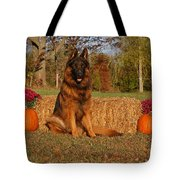 Hoss In Autumn II Tote Bag by Sandy Keeton