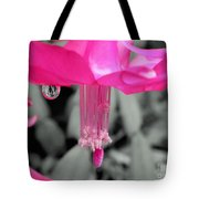Hot Pink Cactus Tote Bag by Kaye Menner