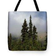 Hurricane Ridge Beauty Tote Bag by Heidi Smith