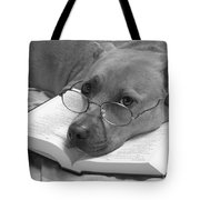 I Read My Bible Every Day . Bw Tote Bag by Renee Trenholm