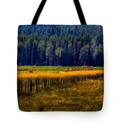 Idaho Hay Bales  Tote Bag by David Patterson