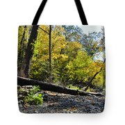 If A Tree Falls Tote Bag by Bill Cannon