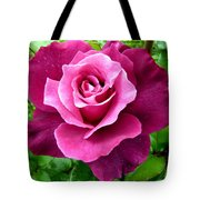Intrigue Rose Tote Bag by Will Borden