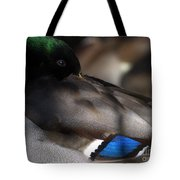 Iridescent Blue Tote Bag by Sharon Talson
