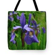 Irises Tote Bag by Randi Shenkman