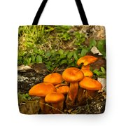 Jack Olantern Mushrooms 7 Tote Bag by Douglas Barnett