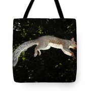 Jumping Gray Squirrel Tote Bag by Ted Kinsman