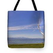 Lake Constace Friedrichshafen Tote Bag by Joana Kruse