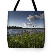 Lake View Tote Bag by Gary Eason