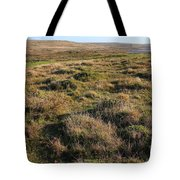 Landscape With Cow Grazing In The Field . 7D9942 Tote Bag by Wingsdomain Art and Photography