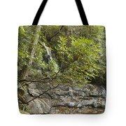Laurel Falls 6226 Tote Bag by Michael Peychich