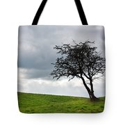 Leafless  Tote Bag by Semmick Photo