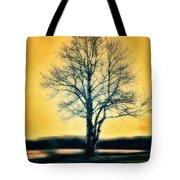 Leafless Tree Tote Bag by Jutta Maria Pusl