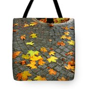 Leafs In Ground Tote Bag by Carlos Caetano